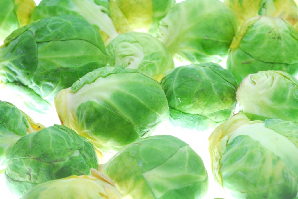 photo cabbage